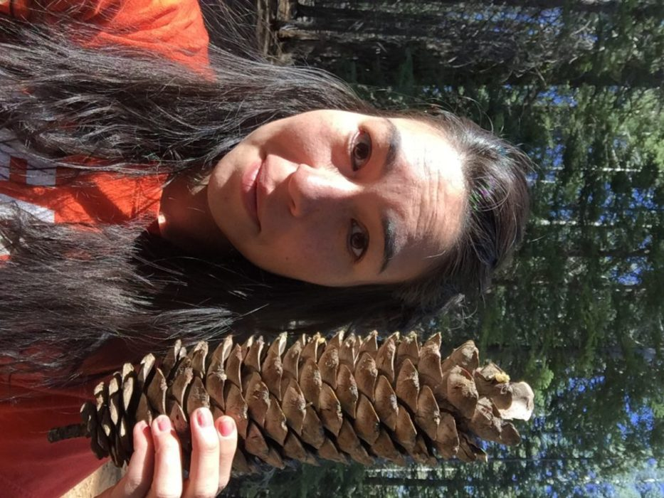 Found a giant pinecone **yes I was already very tired