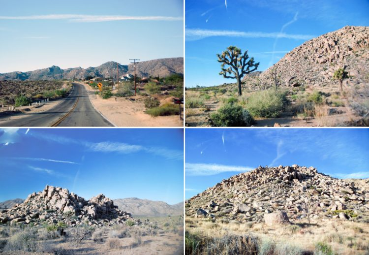 """There are some gnarled and crooked trees. The dessert landscape is like a combo Mars/the movie """"Holes"""" type landscape."""