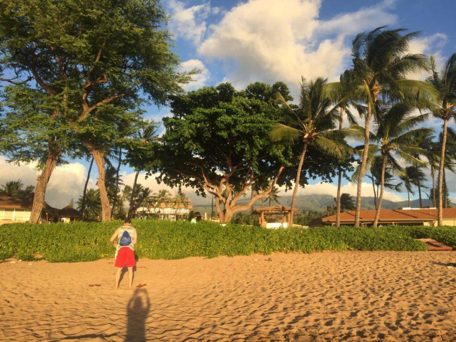 More beach please