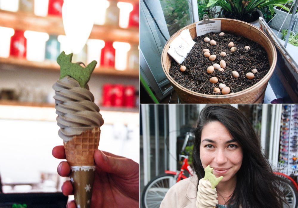 Obviously, soft serve. (the eggs are in warm tea leaves)