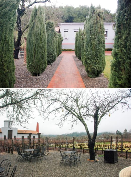 Stopped by for a tasting at Clos Pegase, yes the worst part ws the name and the best part was the wine.