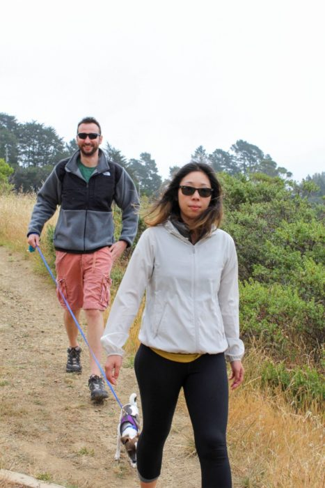 The hike started out in the open and eventually led us into part of Muir Woods