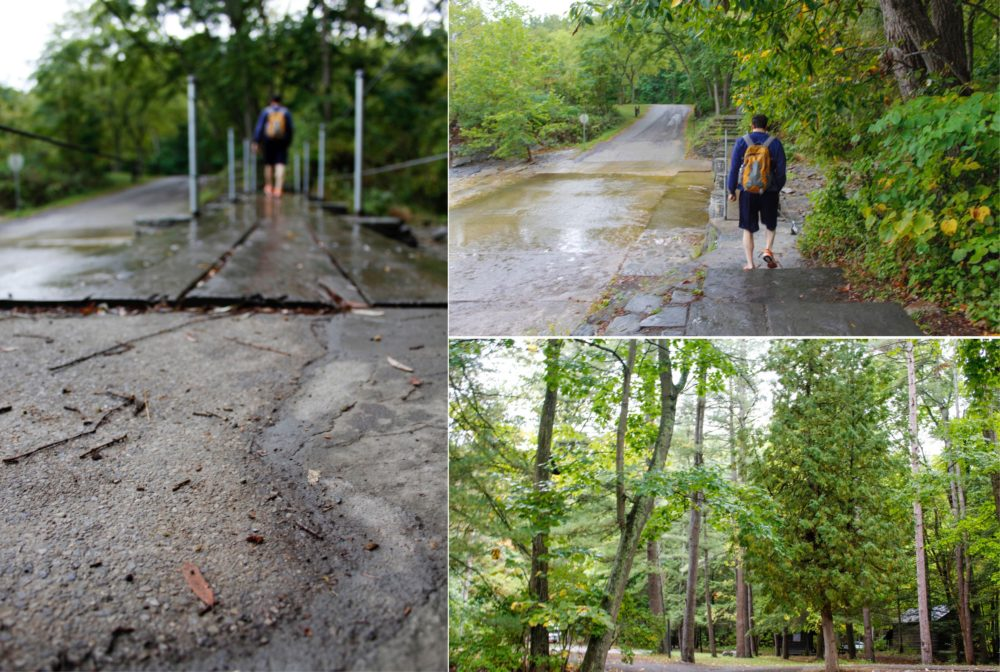 We took the rim trail through Treman State Park